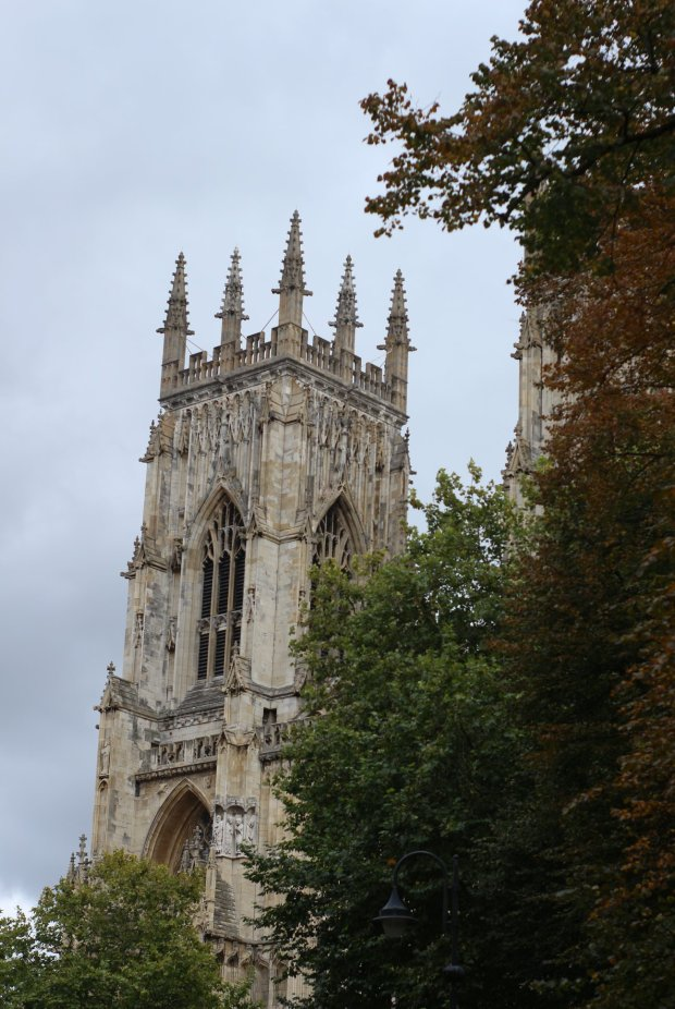 york minster with autumn leaves