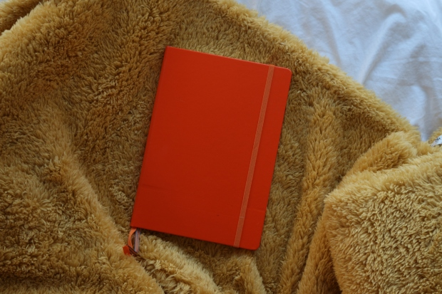 orange leuchtturm 1917 bullet journal