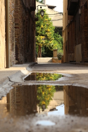 yellow light through door tree in puddle reflection spain street photography
