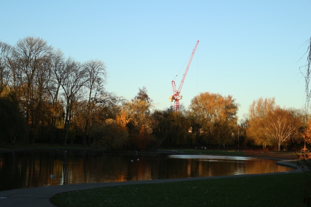 crane trees and lake in autumn