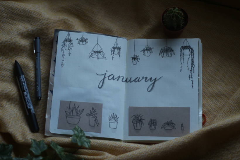 january bullet journal spread plants nature